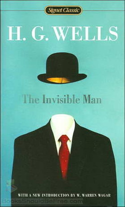 invisible man final essay kristen hahn s senior project invisible man final essay